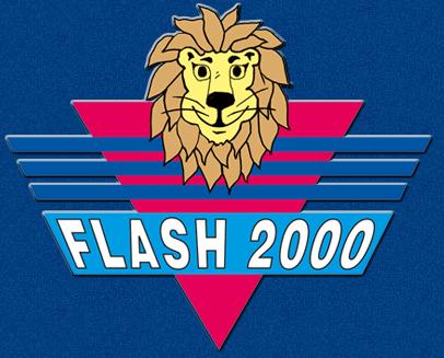 flasj2000